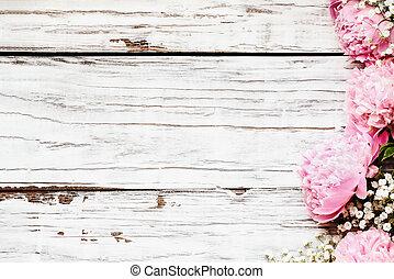 光景, シャクヤク, 呼吸, ピンク, babys, 背景, 白い花, 上に, 木, 上