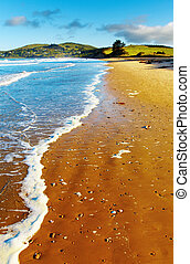 光景, 沿岸である, ニュージーランド