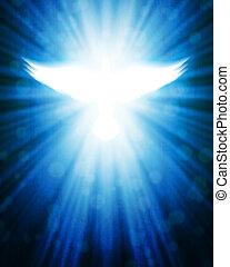 光線, 鳩, 照ること