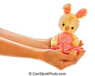 兔子, bunny, 玩具, 被隔离, 在, 手