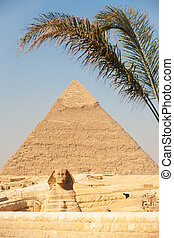 入口, ピラミッド, スフィンクス, ギザ, やし, khafre