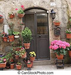 入口, 由于, 很多, ......的, 花