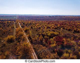 全景, 空中的觀點, 從, 雄峰, ......的, 美麗, 風景, 由于, 土路, 透過, 秋季森林, 在, a, 紅和黃, 音調, 上, a, 背景, ......的, 打掃, 藍色, sky.