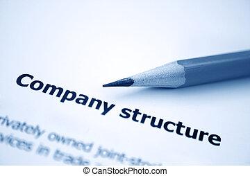 公司, 结构