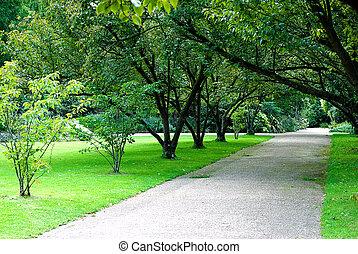 公园, 胡同