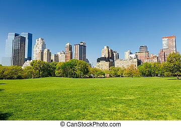 公园, 阳光充足, 中心, 天
