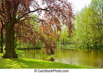 公园, vondel, amsterdam