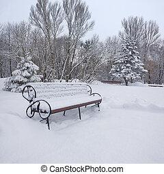 公園城市, 被雪覆蓋, 風景