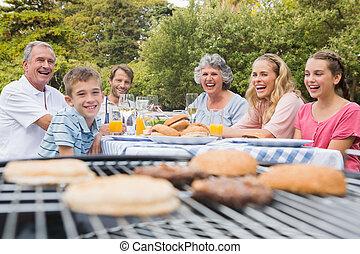 公園, バーベキュー, 持つこと, 笑い, 一緒に, 家族