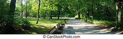 公園, 中に, 秋, 時間