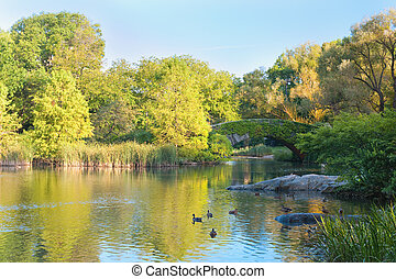 公園, 中央である, 新しい york, 池