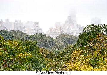 公園, 中央である, 日, 霧が濃い, ny