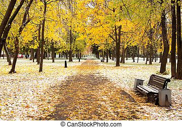 公園, 冬, 絵のよう