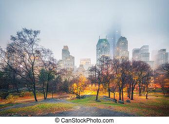 公園, 多雨, ny, 中央, 早晨