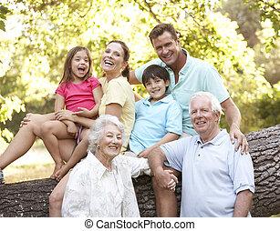 公園, 延長, グループ, 家族の 肖像画