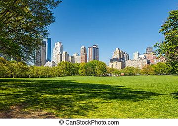 公園, 日当たりが良い, 中央である, 日