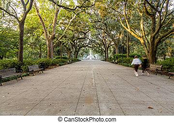 公園, 歩行者, forsyth