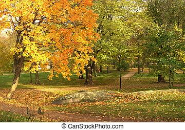 公園, 秋天
