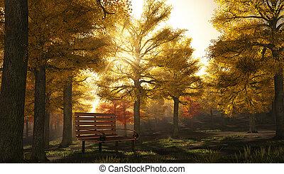 公園, 秋, 現場