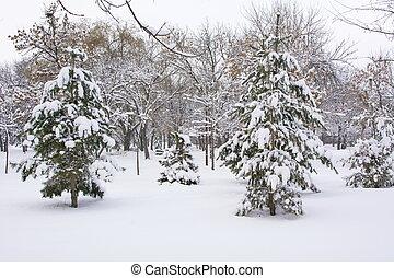 公園, 道, カバーされた, 中に, 重い, 雪