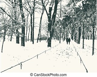 公園, 雪, 都市