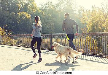 关闭, 在中, 夫妇, 带, 狗, 跑, 在户外