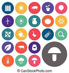 其他, 矢量, 植物, icons., 能量, synonyms, 元素, 集合, 投手, 測量, 母牛, 簡單, ...
