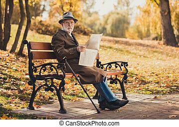 写真, ジーンズ, 公園, 年金受給者, デニム, 静寂, 秋, 朝, 黄色, 屋外で, enjot, 新聞, ウエア, 上着類, 古い, フルである, 深刻, 町, 大きさ, headwear, 季節, 早く, 人, 座りなさい, ベンチ, 読まれた