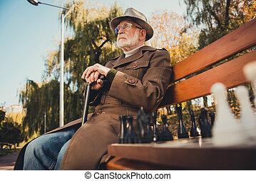 写真, 歩きなさい, いいえ, 秋, ウエア, 森林, ジャケット, スティック, 競技者, 孤独, プレーヤー, 森, 古い, チェス, 持ちなさい, 町, プロフィール, 側, headwear, 人, カラフルである, 座りなさい, ベンチ, 公園