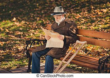 写真, 残り, リラックスしなさい, 葉, 公園, 秋, 芝生, 緊張状態, 新聞, ウエア, 上着類, 注意深い, 草, 孤独, 古い, 深刻, プロフィール, 側, 季節, 人, 座りなさい, ベンチ, 読まれた