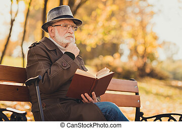 写真, 残り, 歩くこと, リラックスしなさい, 10 月, 情報, 本, 読まれた, 考えなさい, ライフスタイル, 秋, ウエア, スティック, 帽子, sense., 何か, 古い, 百科事典, 自然, プロフィール, 側, headwear, 哀愁を秘めた, 木, 人, 座りなさい, ベンチ, 公園