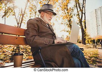 写真, 10 月, 情報, freelancer, 秋, コート, 外, 探索, ウエア, 森林, 談笑する, 帽子, ラップトップ, 仕事, 古い, 天候, 町, プロフィール, 側, headwear, 集中される, 座りなさい, ベンチ, 公園