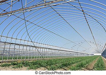 农业的建筑物, 为, 农场