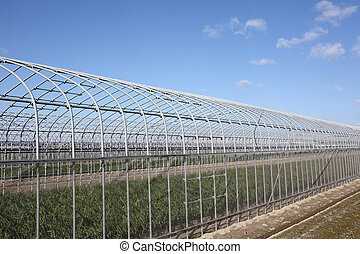 农业的建筑物