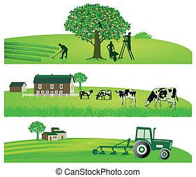 农业, 同时,, 花园