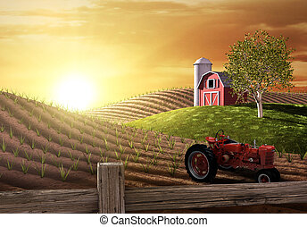 农场, 早晨