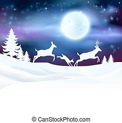 冬場面, クリスマス