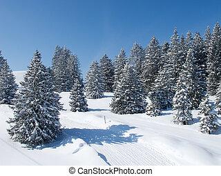 冬天, 在, 高山
