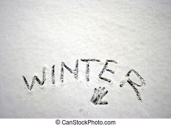 冬天, 在, the, 雪