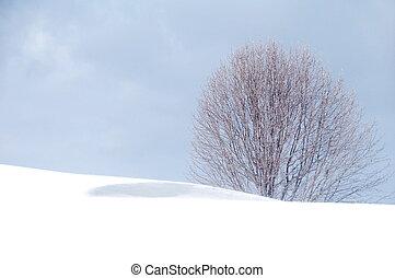 冬天, 藍色