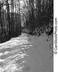 冬天, 路徑