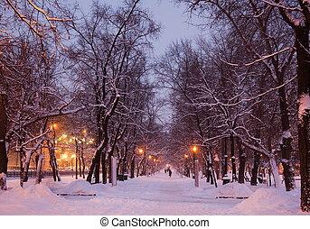 冬天, evening., moscow., russia.