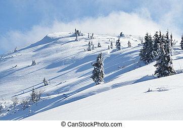 冬季, 平静, 山地形, 带, 雪覆盖, firs