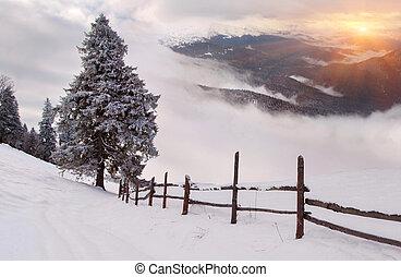 冬季, 日出, 在山