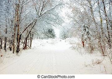 冬季, 胡同
