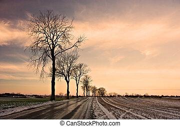 冬季, 道路