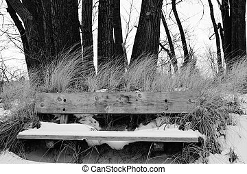 冬, ∥において∥, ∥, 公園