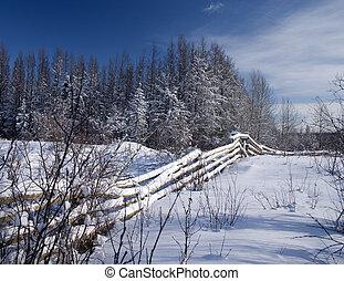冬, フェンス