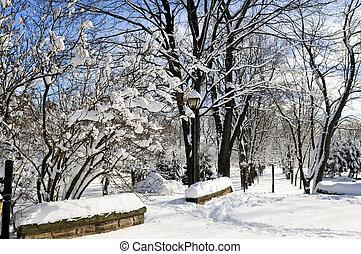 冬, 公園
