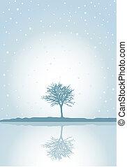 冬, 反射